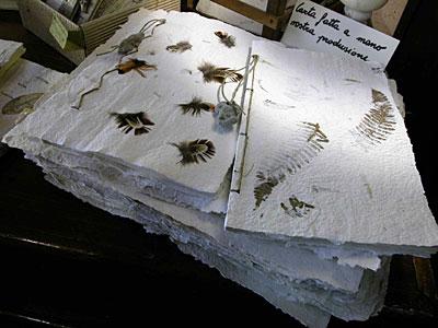 Diari  in carta a mano con inclusioni di fiori pressati e piume